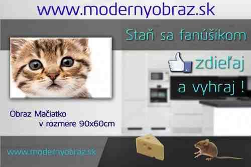 moderny obraz sutaz