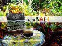 Cestovateľská súťaž o kávu z Bali