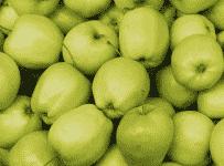 Vyhrajte zeleninu a ovocie na pol roka zadarmo!