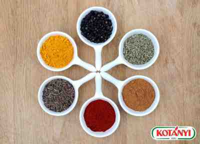 Vyhrajte balíček produktov Kotányi