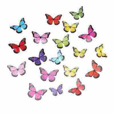 Soutěž o sadu 3D barevných motýlků na zeď