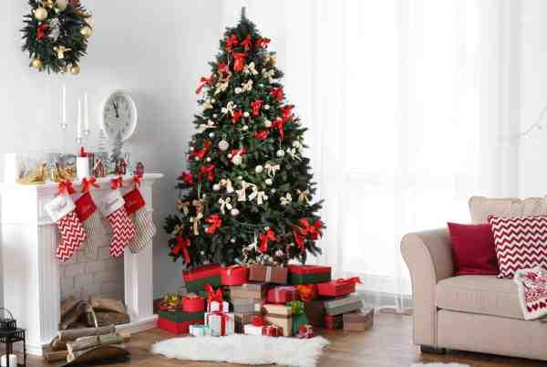 Hľadáme najkrajší vianočný stromček!