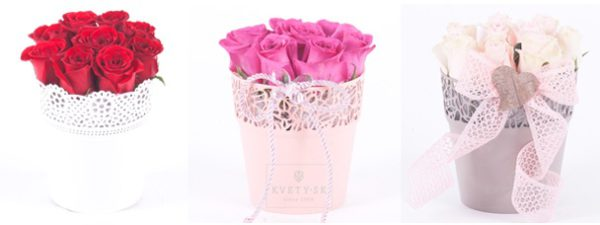 Zapojte sa do súťaže o 3× črepník plný ruží