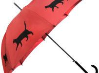 Súťaž o dámsky palicový dáždnik značky Blooming Brollies