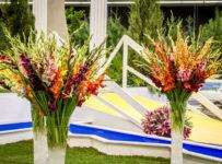 Vyhrajte vstupenky na kvetinovú výstavu a záhradnícky veľtrh Flora Olomouc