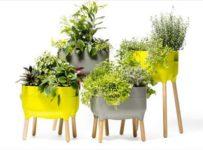 Soutěž o poukazy na samozavlažovací květináče Plastia