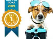 Súťaž Naj pes roka 2019 Premium Dog