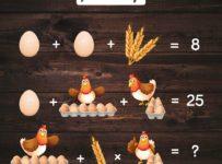 Súťaž o čerstvé vajíčka z voľného výbehu od farmy Kováčik