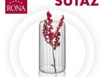 Súťaž o optišovú vázu RONA
