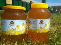 Súťaž o repkové medy od Včelia farma BeeHouse