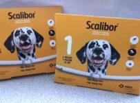 Vyhrajte antiparazitný obojok Scalilbor pre veľkých psov