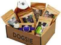 Súťaž o balíček Dogsie plný prekvapení
